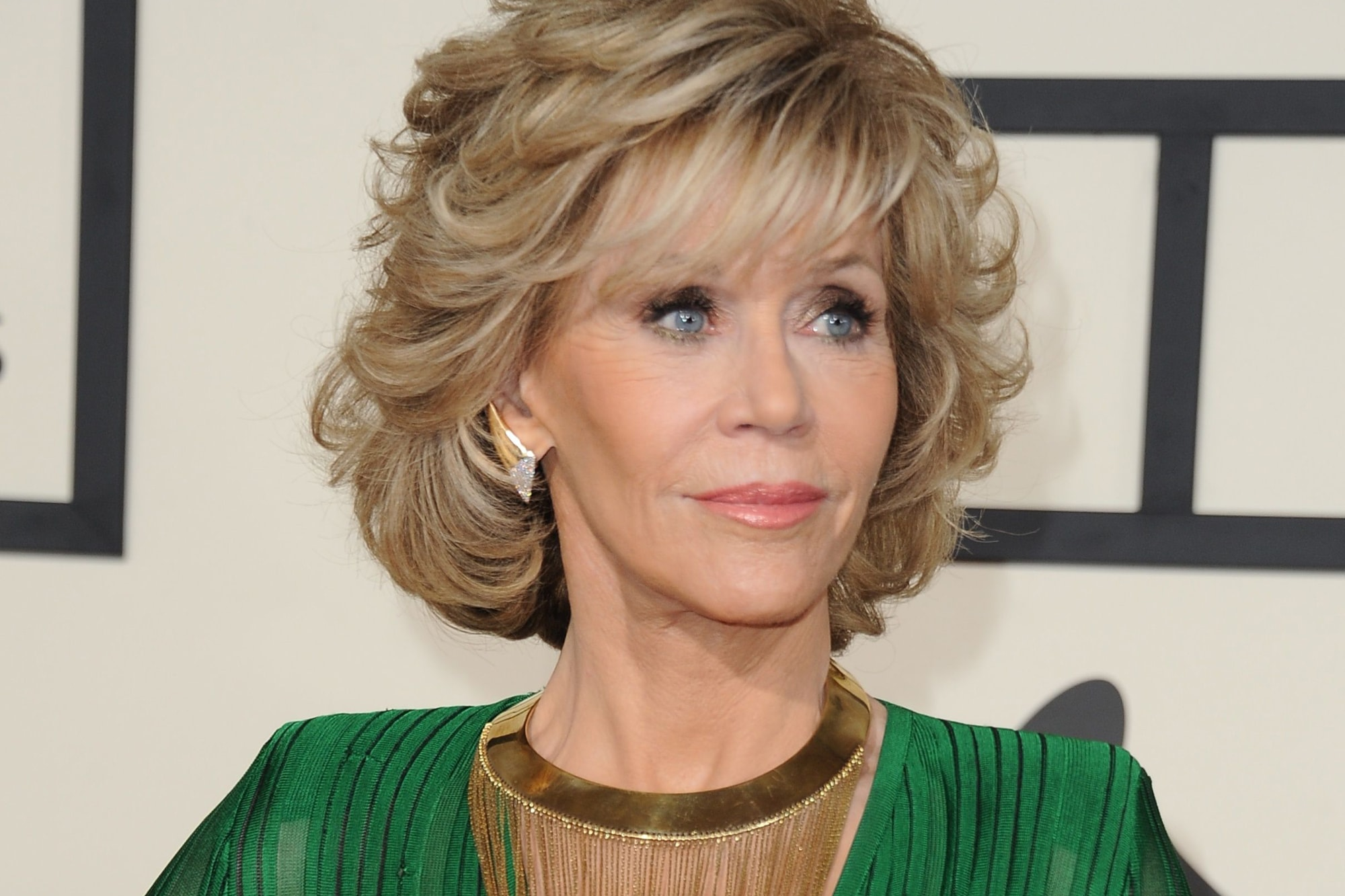 a biography of jane fonda the american actress and political activist Jane fonda is an american actress, writer, political activist, former fashion model, and fitness guru she rose to fame in the 1960s with films such as barbarella and cat ballou and has.