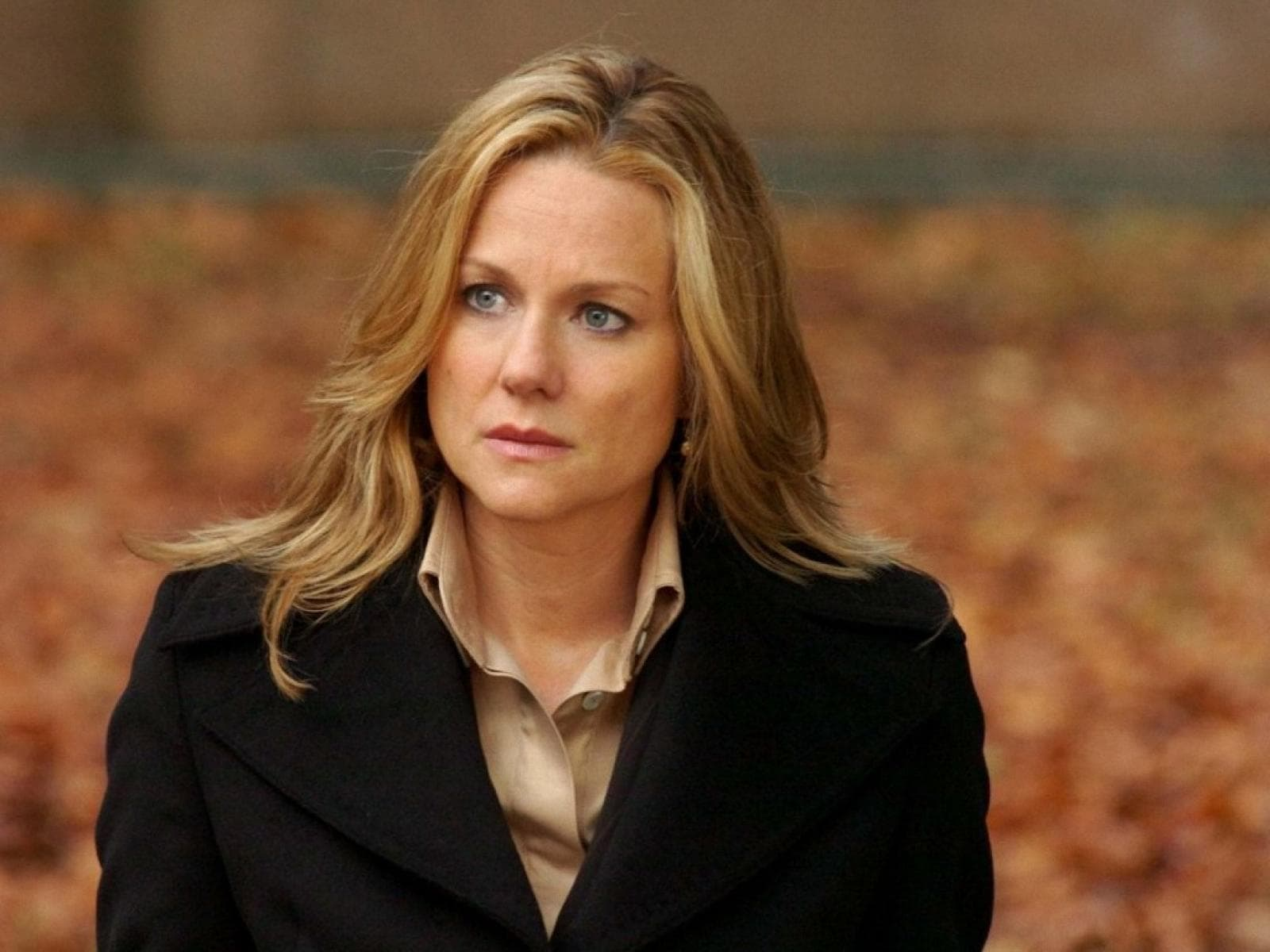 Laura Linney HQ wallpapers