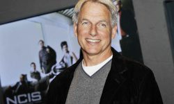 Mark Harmon HQ wallpapers