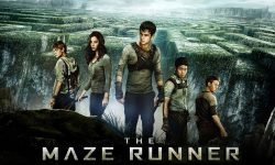 The Maze Runner HQ wallpapers