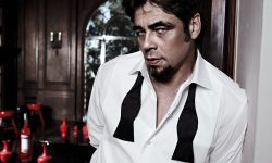 Benicio Del Toro Background
