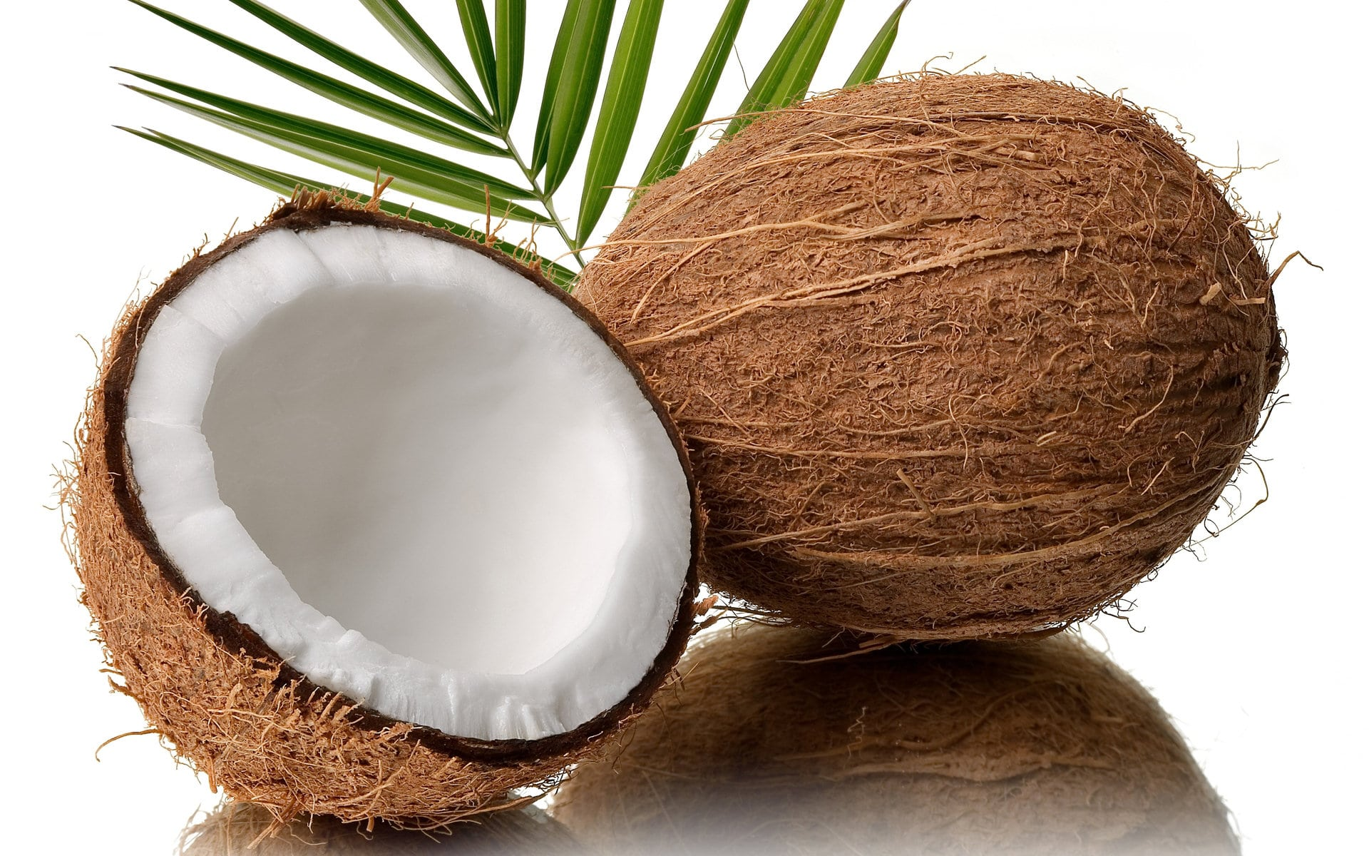 Coconut Desktop wallpapers