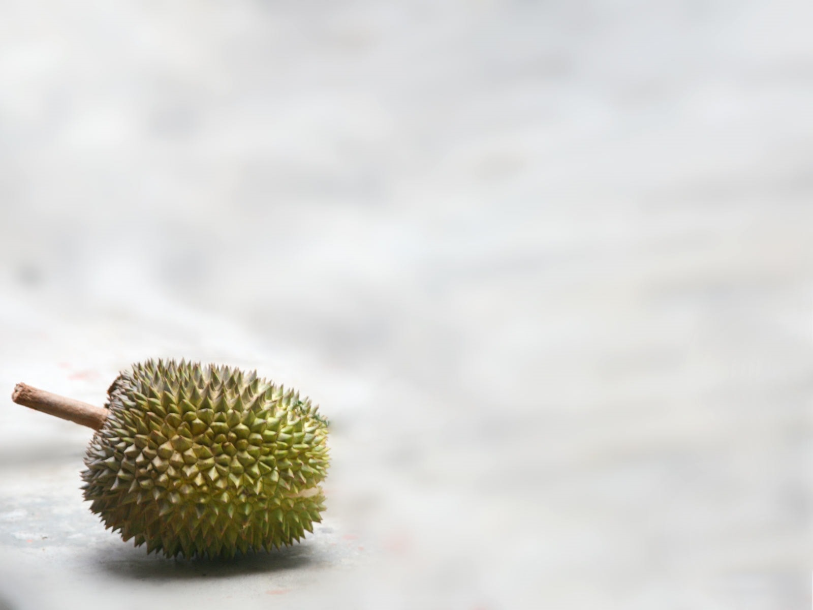 Durian Desktop wallpapers