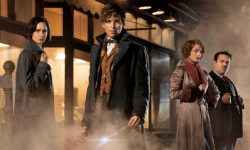 Fantastic Beasts and Where to Find Them Desktop wallpapers