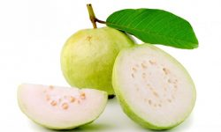 Guava Background