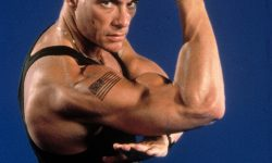 Jean Claude Van Damme Desktop wallpapers