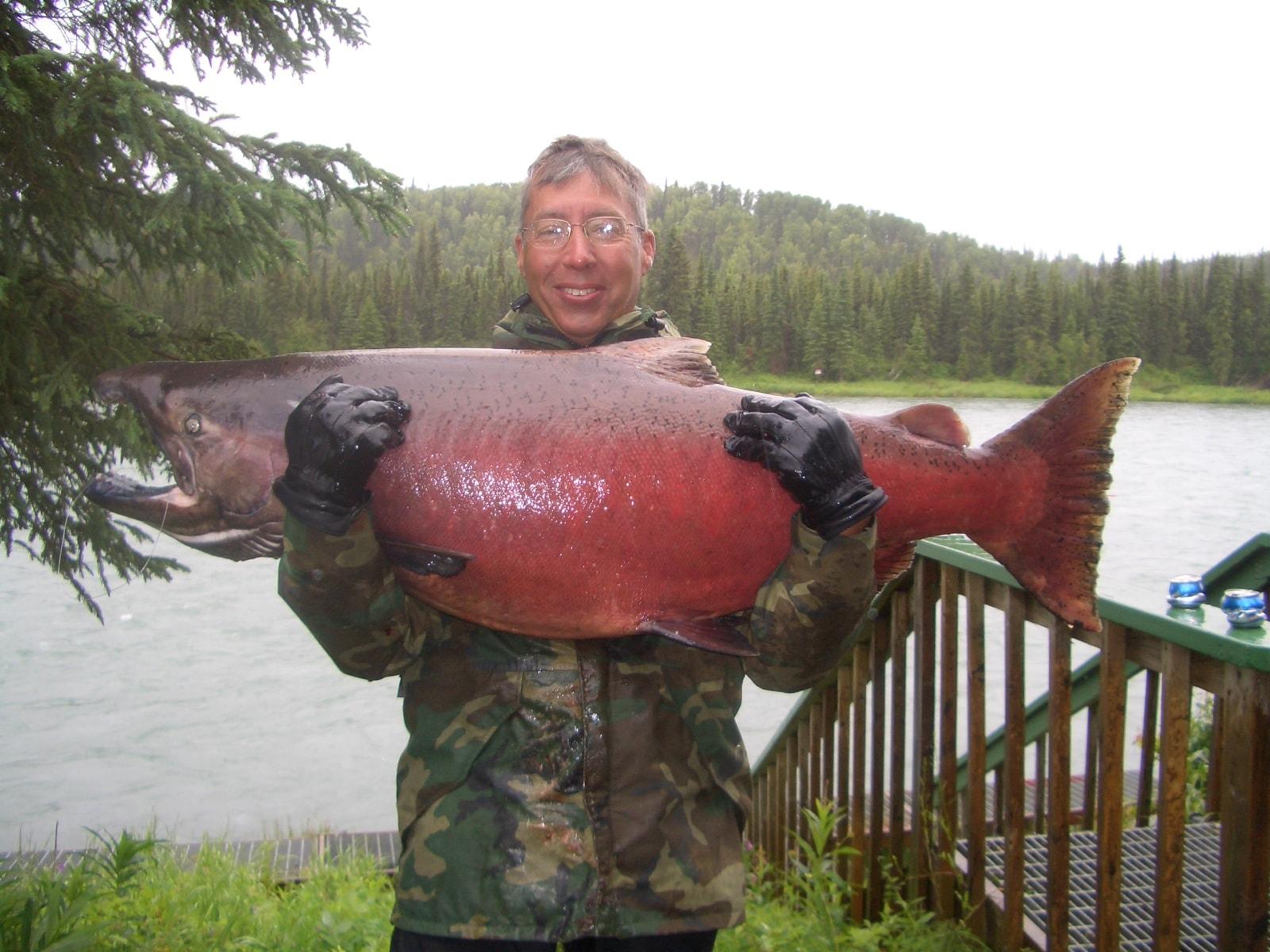 King salmon Desktop wallpapers
