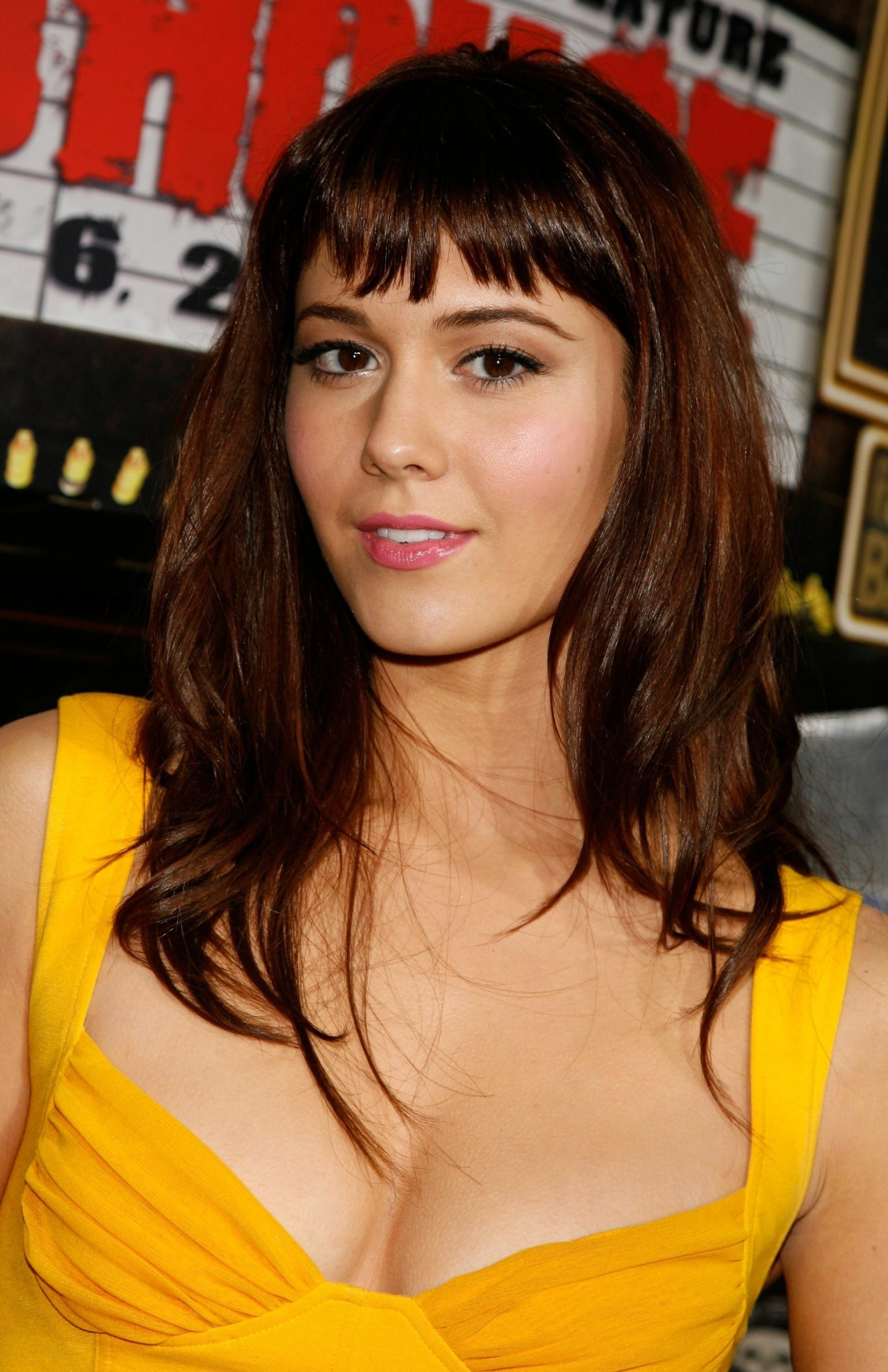 Mary Elizabeth Winstead Desktop wallpapers