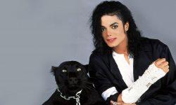 Michael Jackson Screensavers