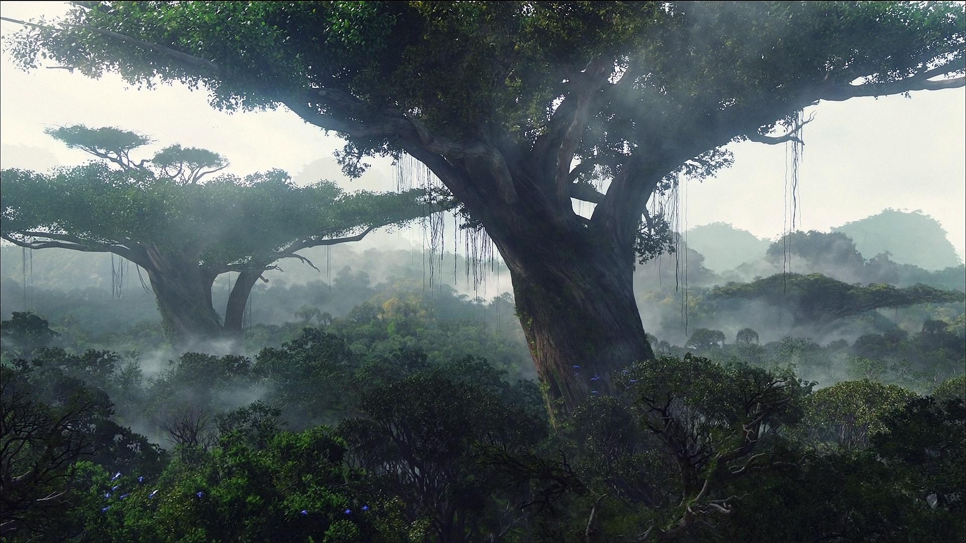 Avatar Background