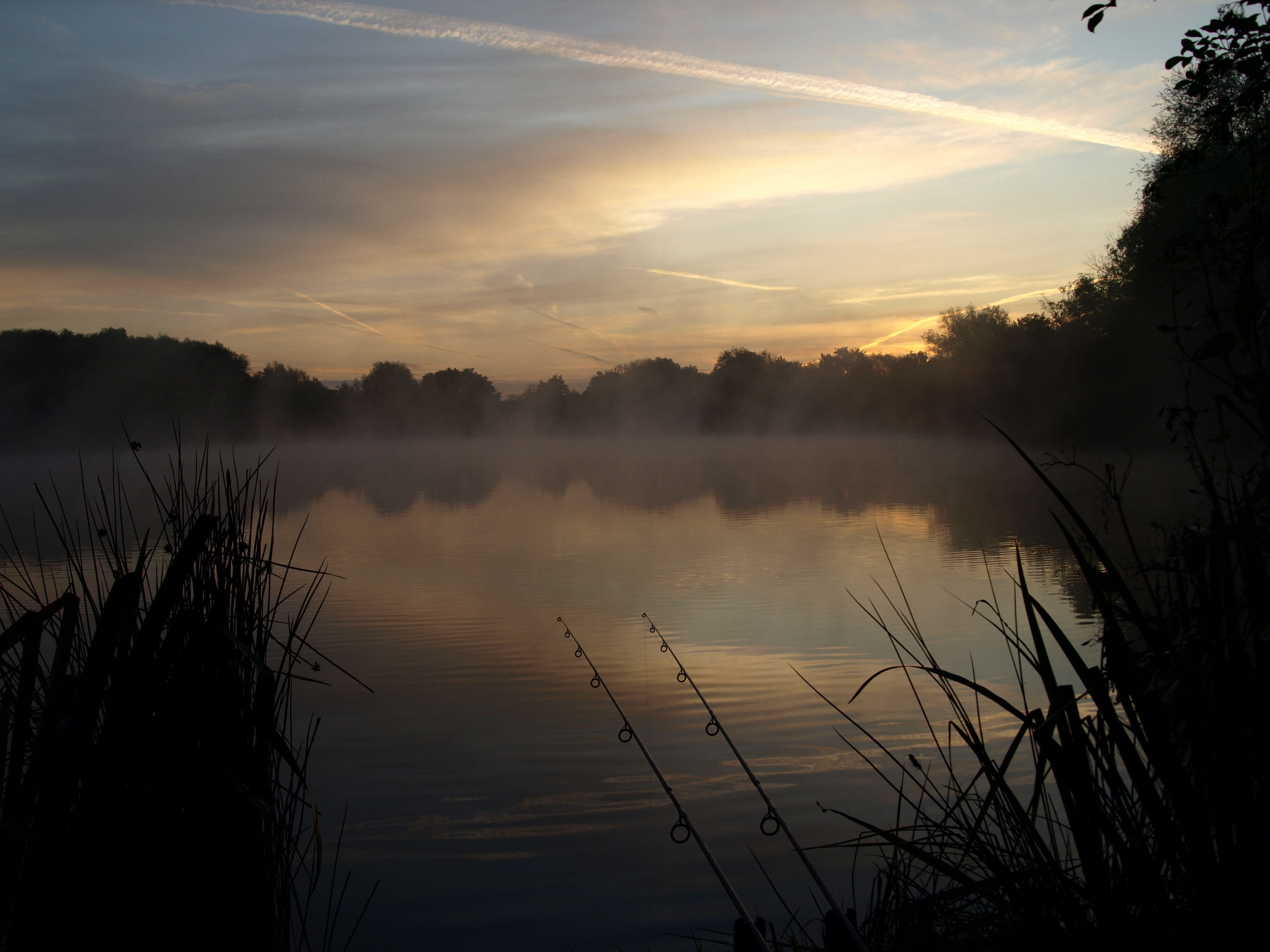 Carpfishing Background