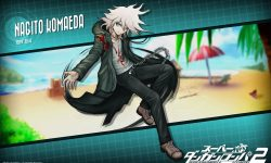 Danganronpa 2: Goodbye Despair Background