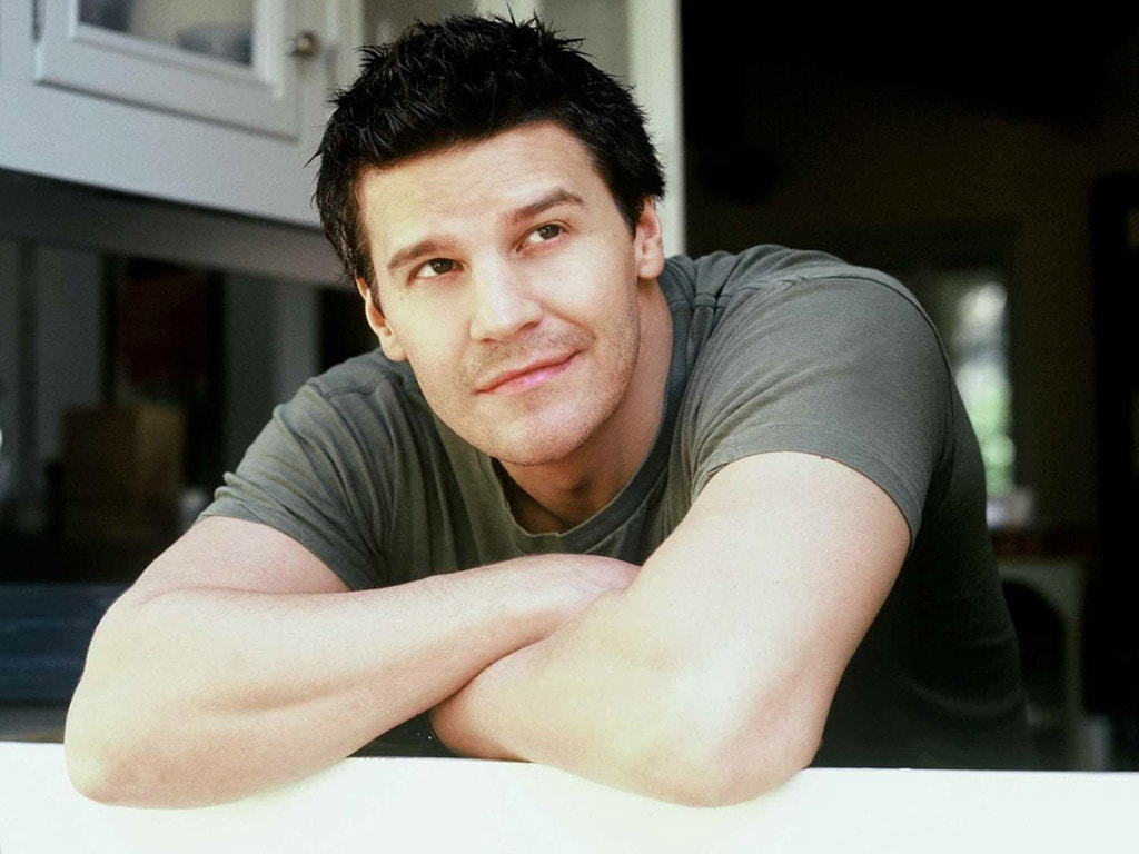 David Boreanaz Background
