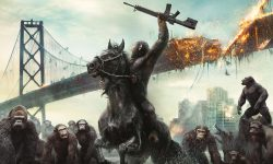 Dawn of the Planet of the Apes Background