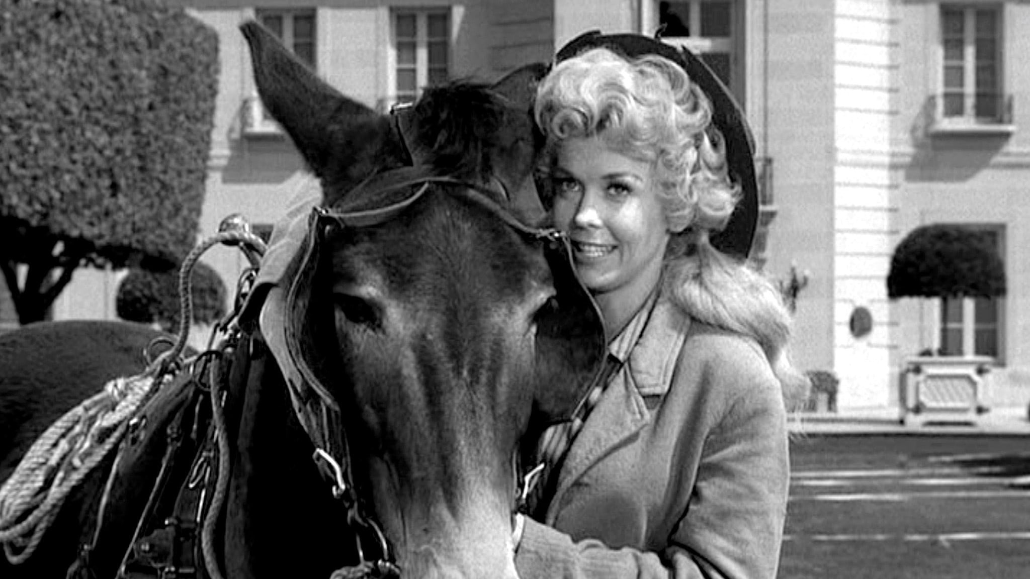 Donna Douglas Background