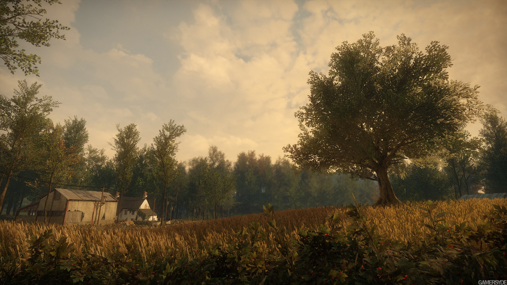 Everybody's Gone to the Rapture Background