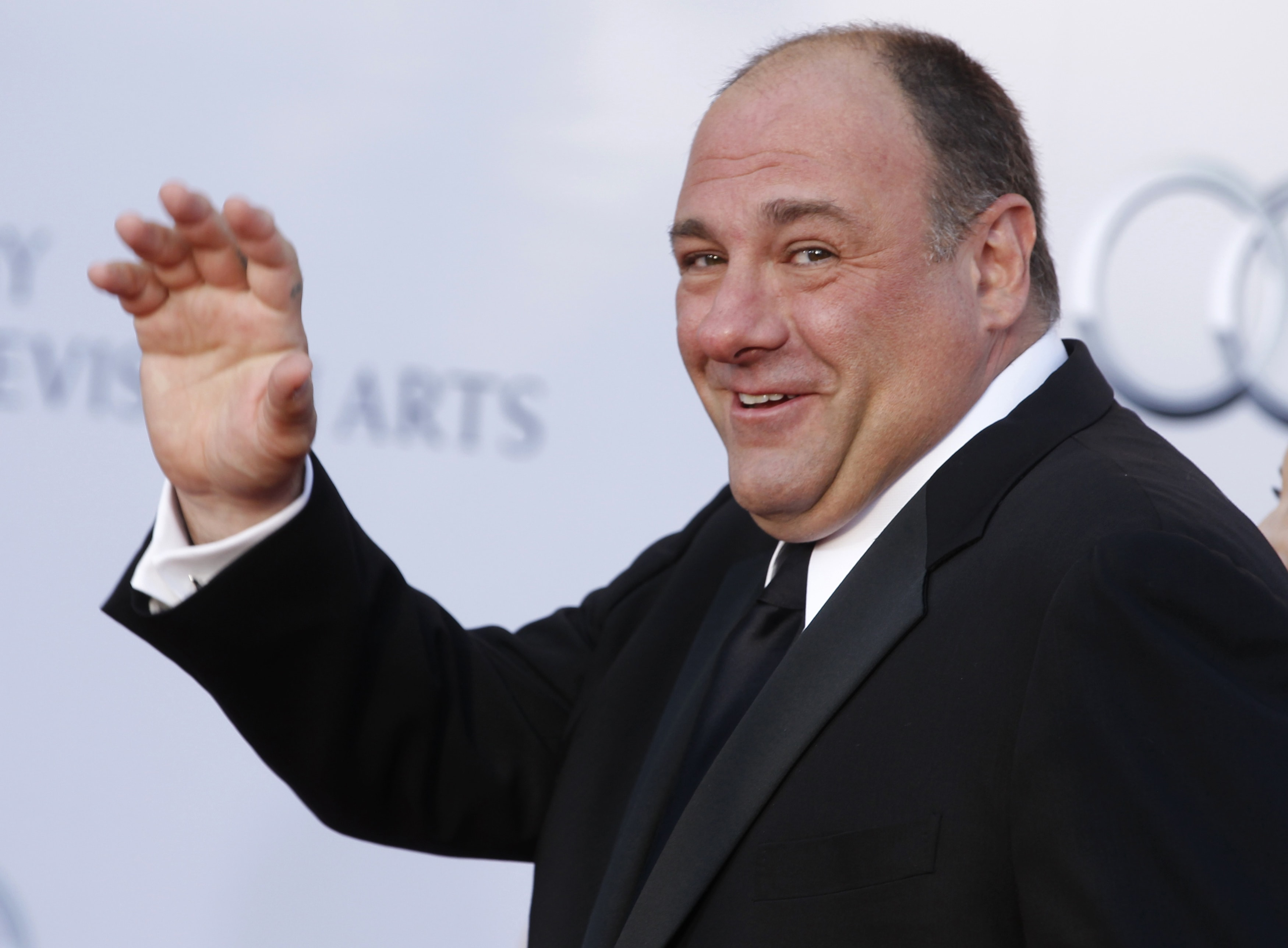 James Gandolfini Background