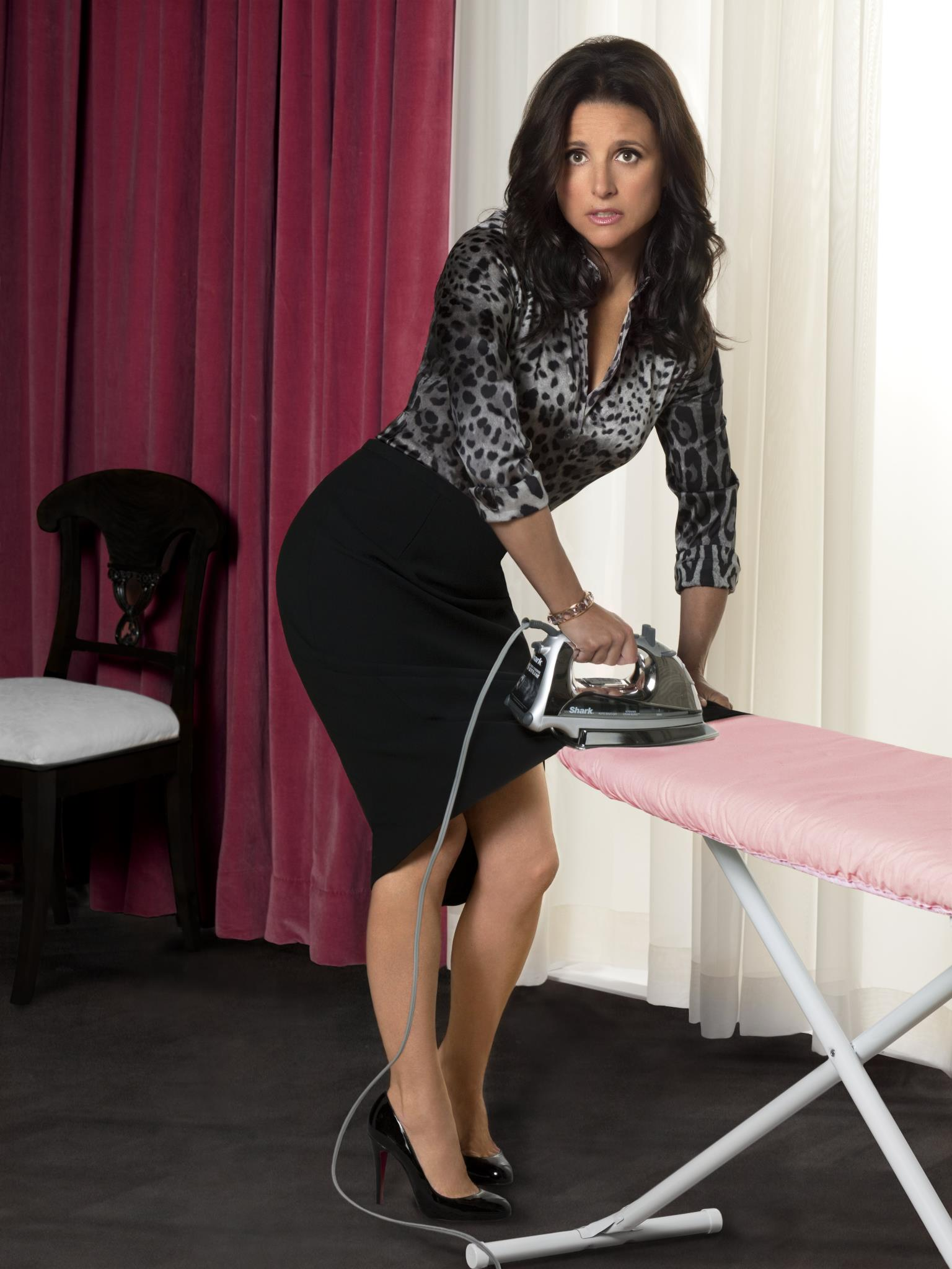 Julia Louis-Dreyfus Background