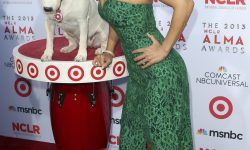 Maria Canals Barrera HQ wallpapers