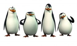 Penguins Of Madagascar Desktop wallpapers