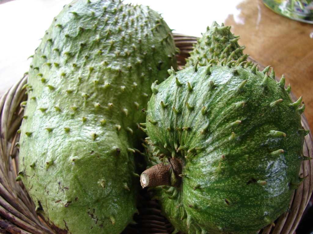 Soursop Background