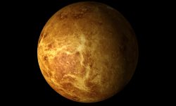 Venus Background