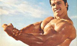 Arnold Schwarzenegger HD pics