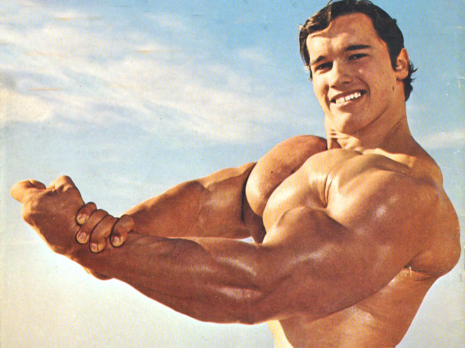 Arnold Schwarzenegger Hd Wallpapers 7wallpapers Net