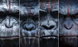 Dawn of the Planet of the Apes HD pics