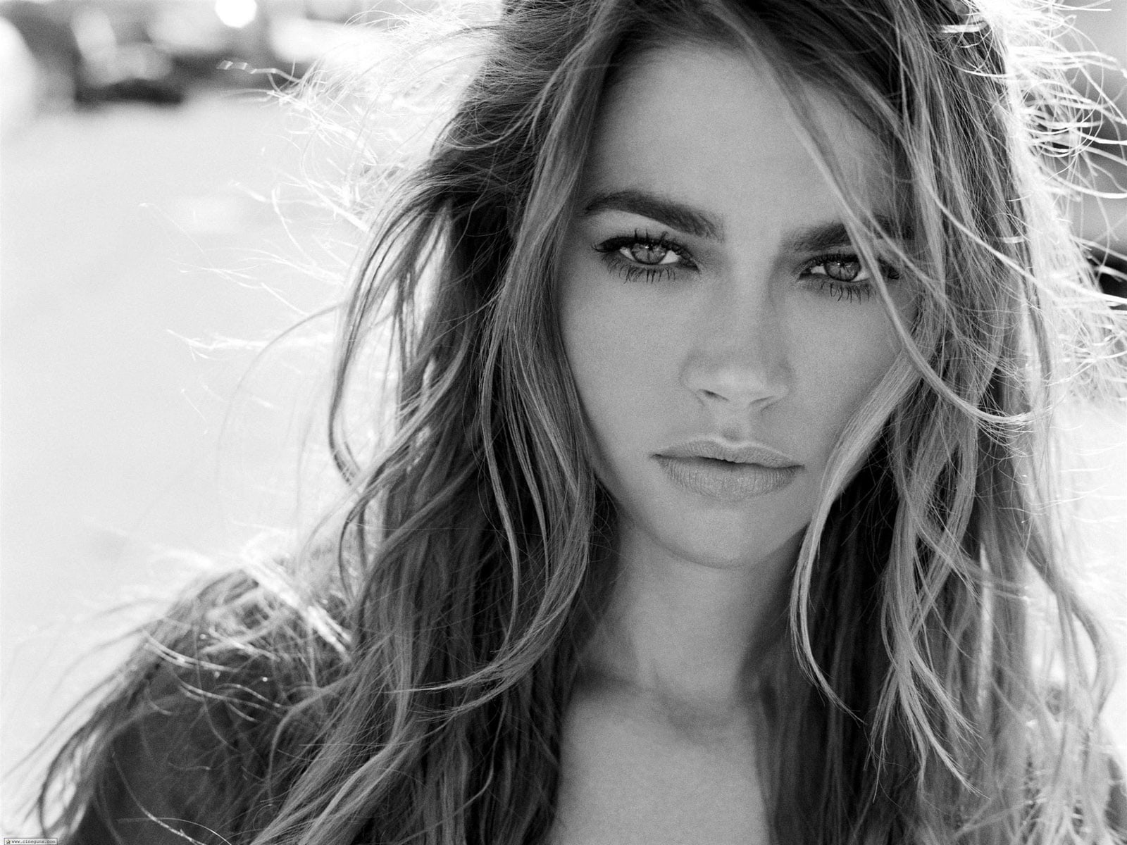 Denise Richards HD pics
