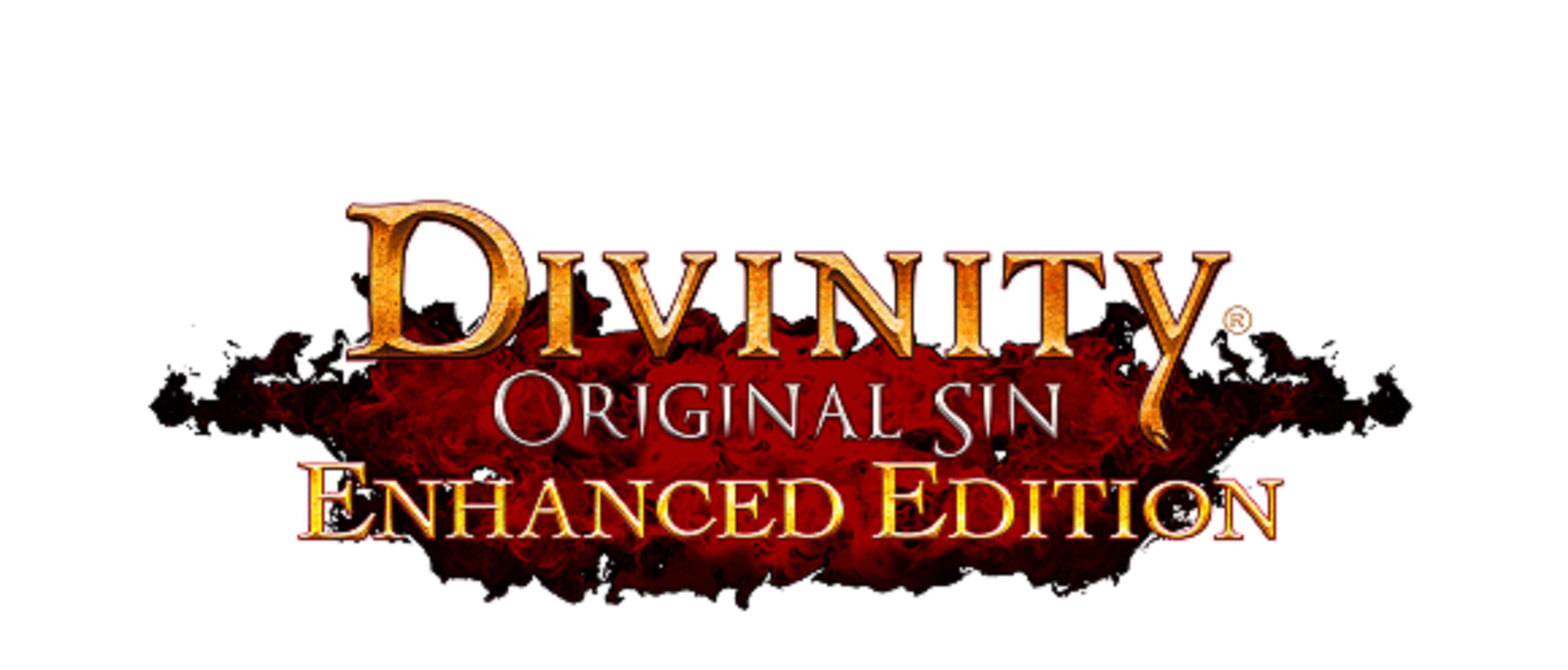 Divinity: Original Sin - Enhanced Edition HD pics