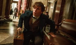 Fantastic Beasts and Where to Find Them HD pics
