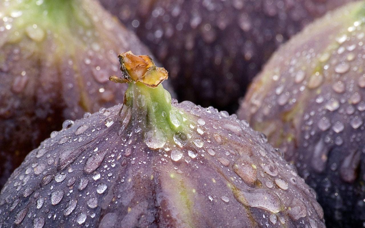Figs HD pics