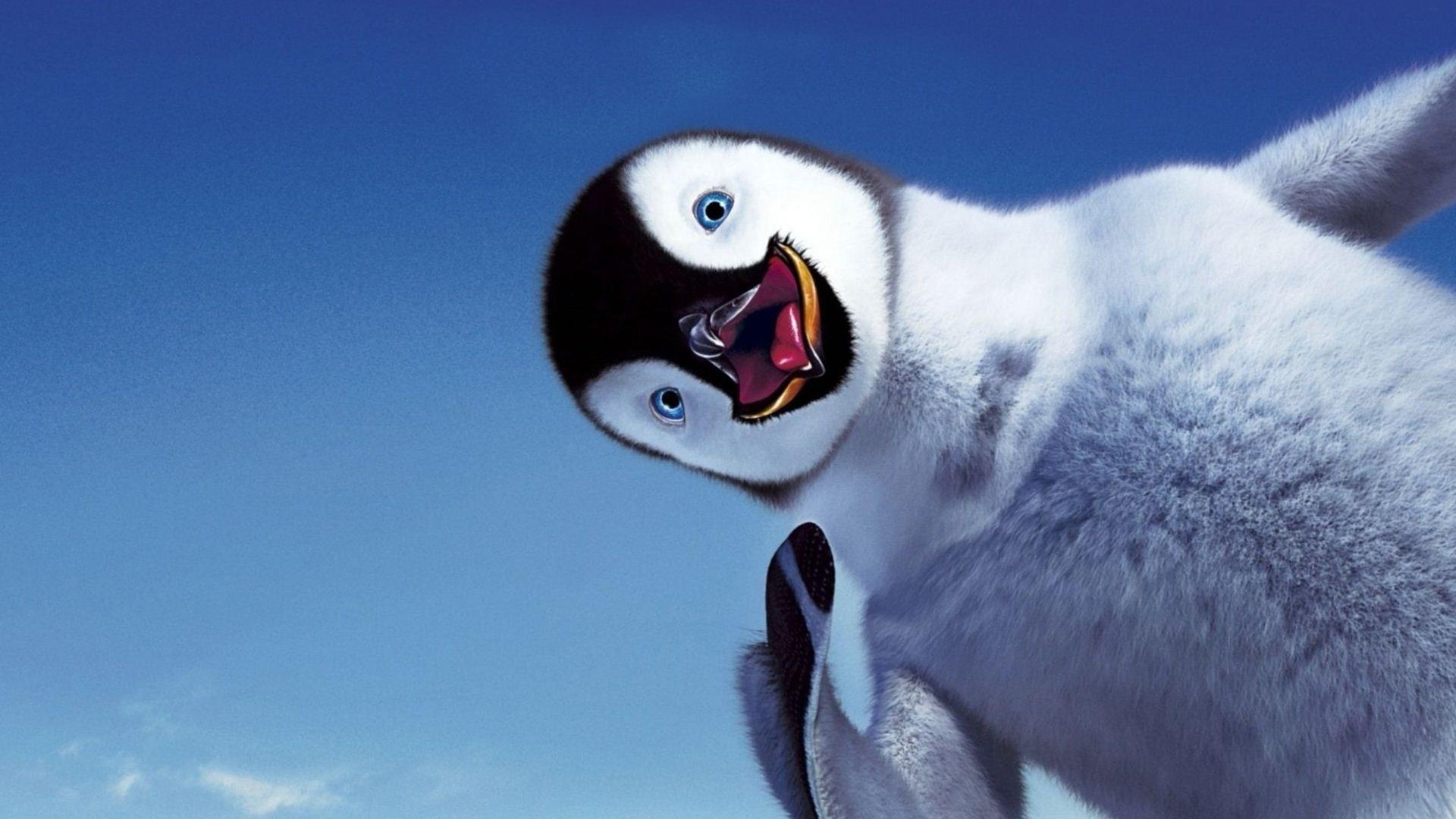 Penguin HD pics