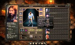 Pillars of Eternity: The White March 2 HD pics