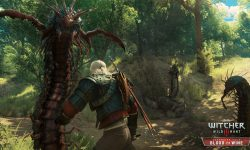 The Witcher 3 Wild Hunt - Blood and Wine HD pics