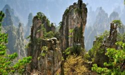Tianzi Mountain HD pics