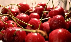 Cherry Wallpapers hd
