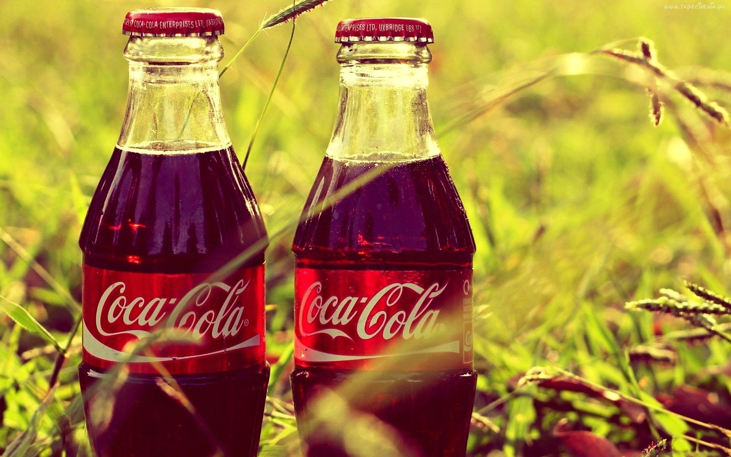 Coca-Cola Wallpapers hd