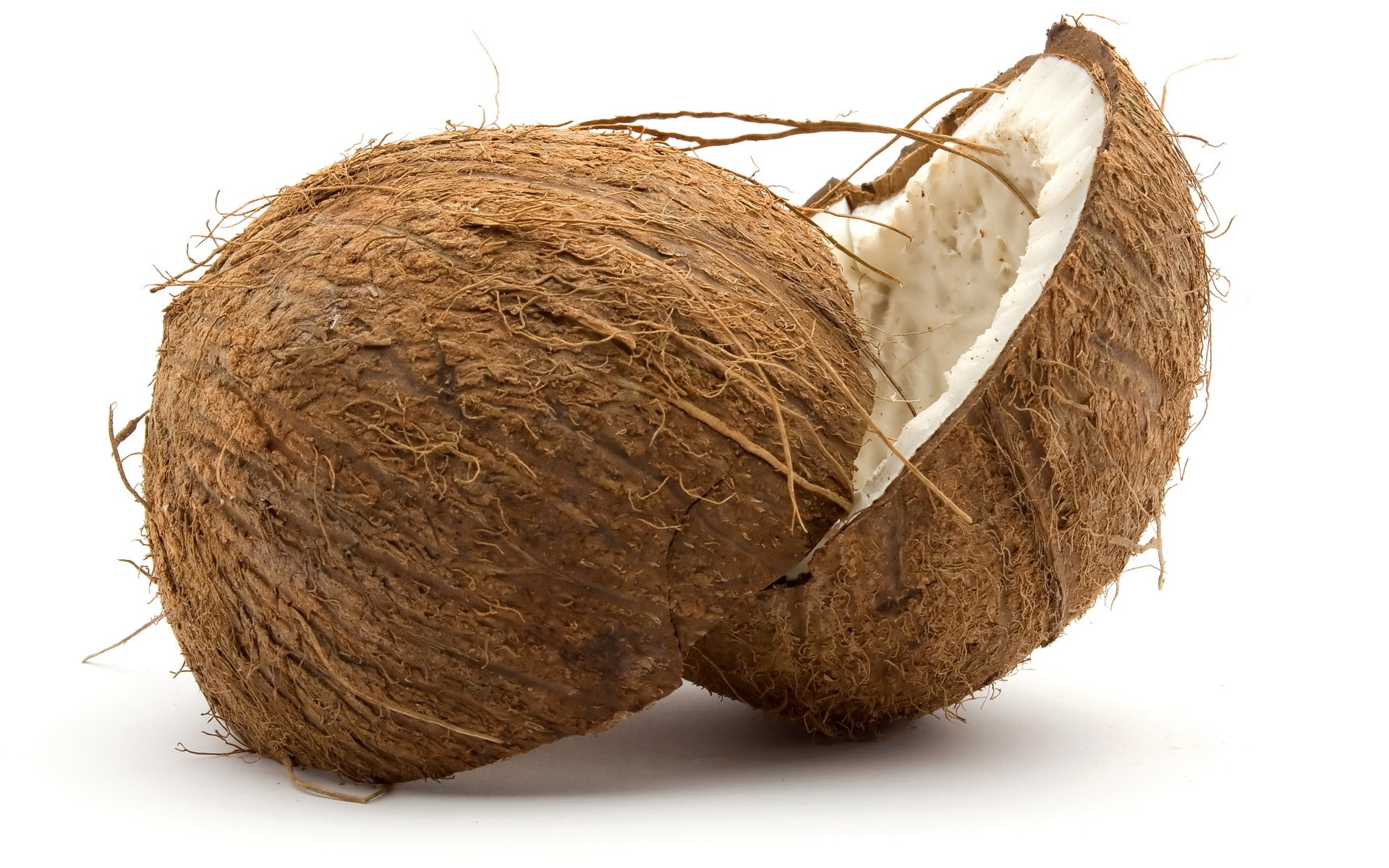 Coconut Wallpapers hd