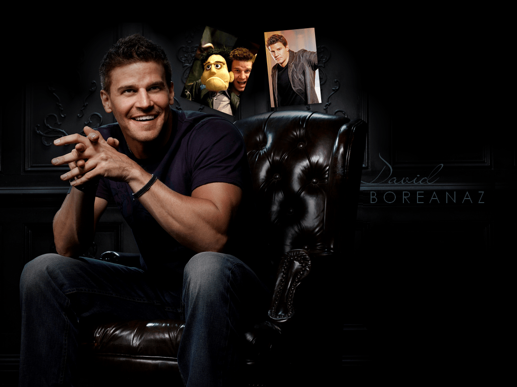 David Boreanaz Wallpapers hd