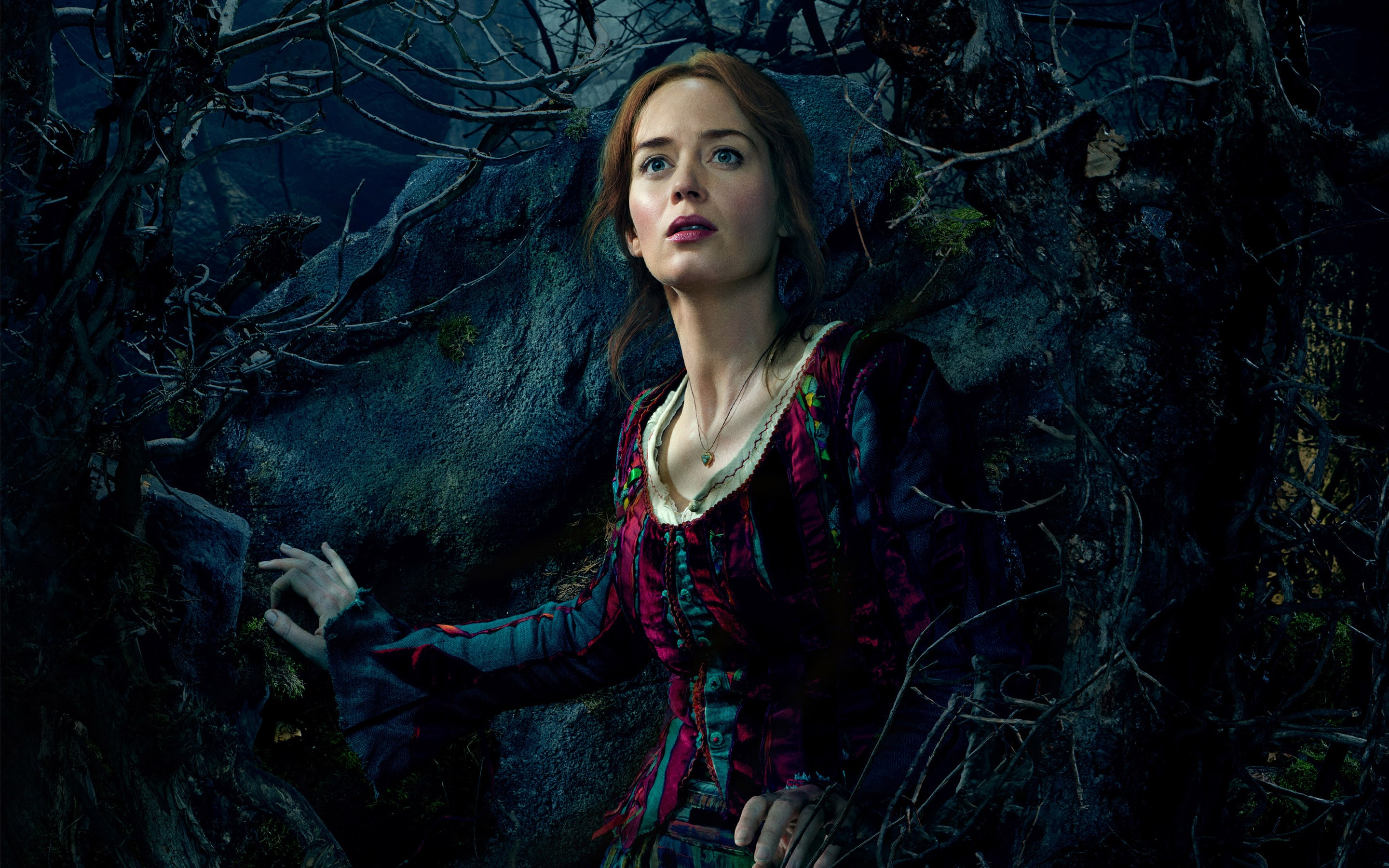 Into The Woods Wallpapers hd