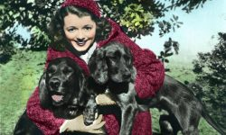 Janet Gaynor Wallpapers hd