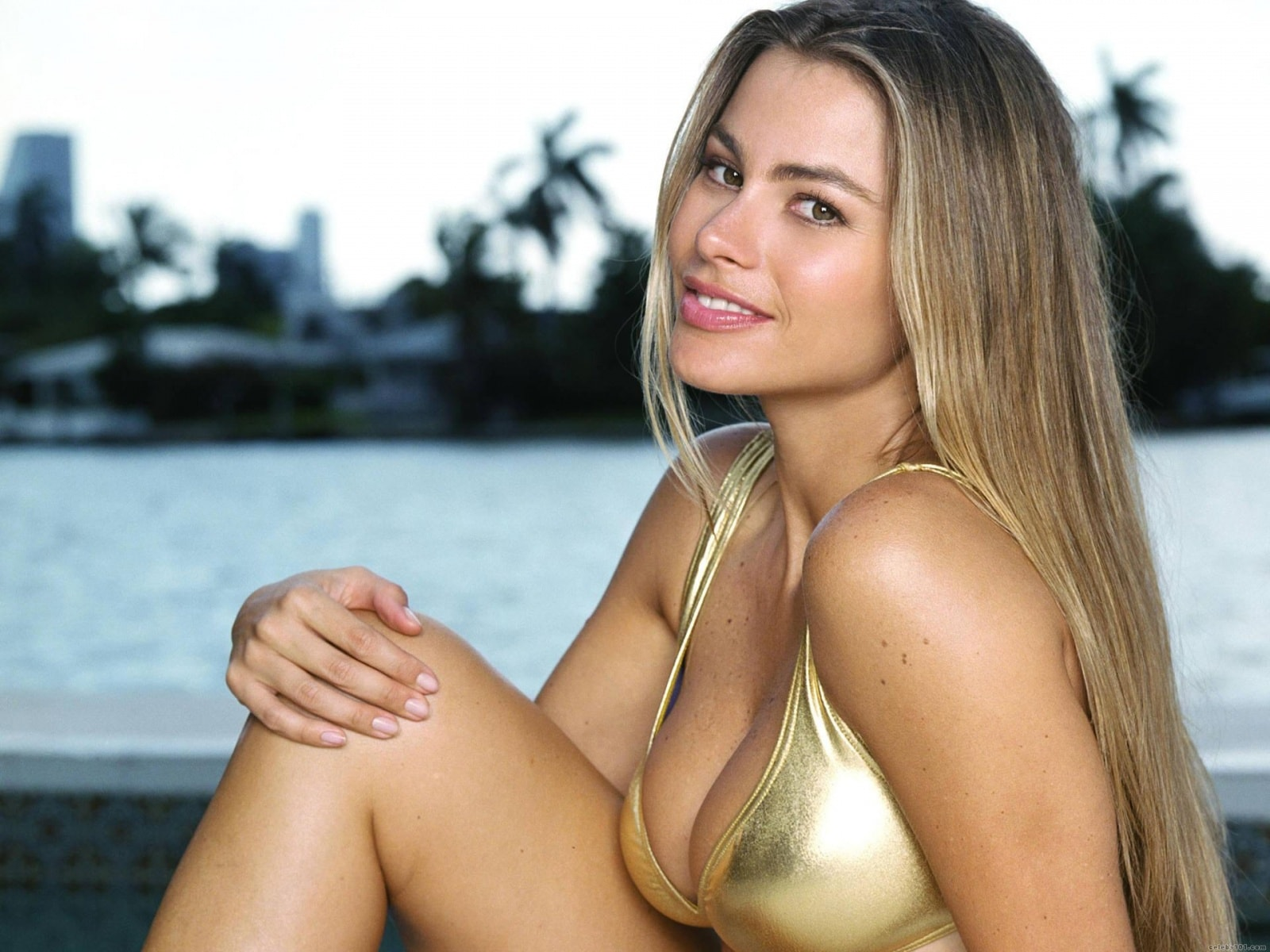 Sofia Vergara Wallpapers hd
