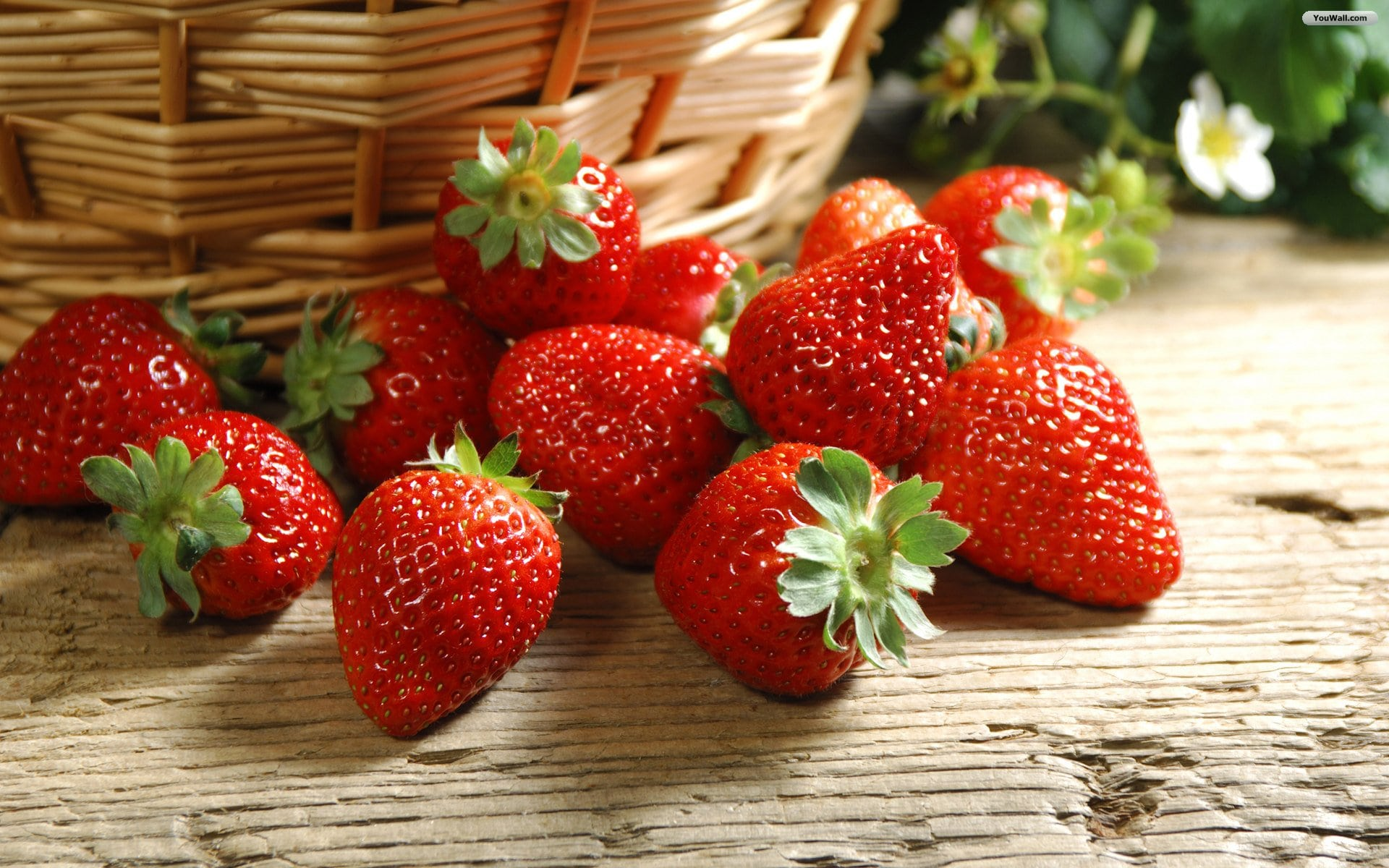 Strawberry HD pictures