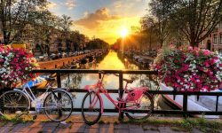 Amsterdam Backgrounds