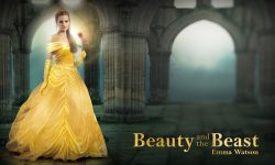Beauty and the Beast Backgrounds