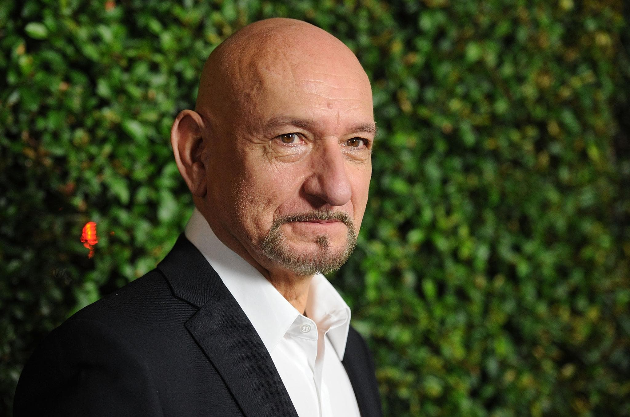 Ben Kingsley Backgrounds