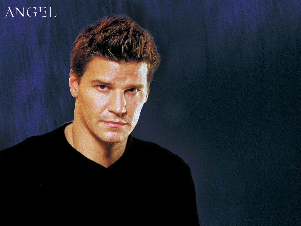 David Boreanaz Backgrounds