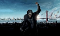 Dawn of the Planet of the Apes Backgrounds